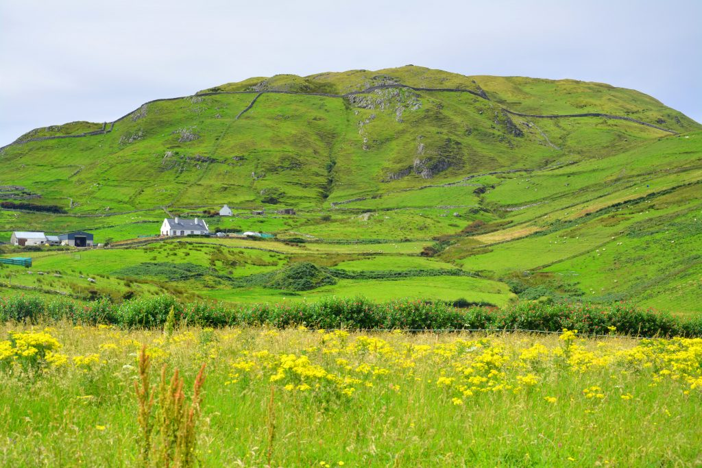 Green hills of Ireland in County Mayo