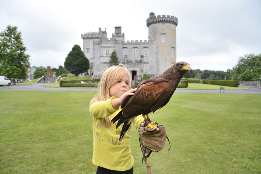 Falconry at Dromoland Castle Hotel, Ireland